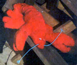 A picture of Lobby the Lobster that Scott made for Allison